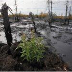 разлив нефти в тундре