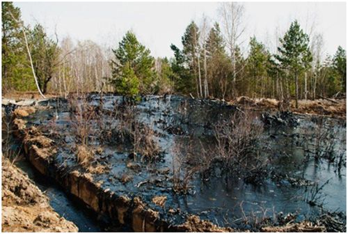 загрязнение почвы нефтеотходами