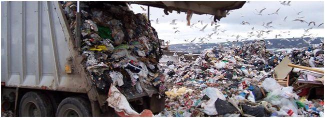 мусор на свалке