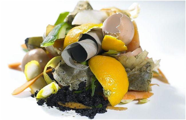 Картинки по Ðапросу пищевые отходы в качестве удобрения