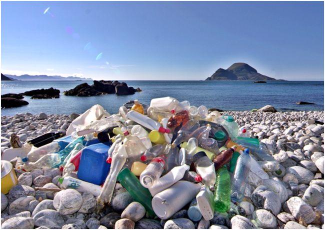 бутылки на пляже