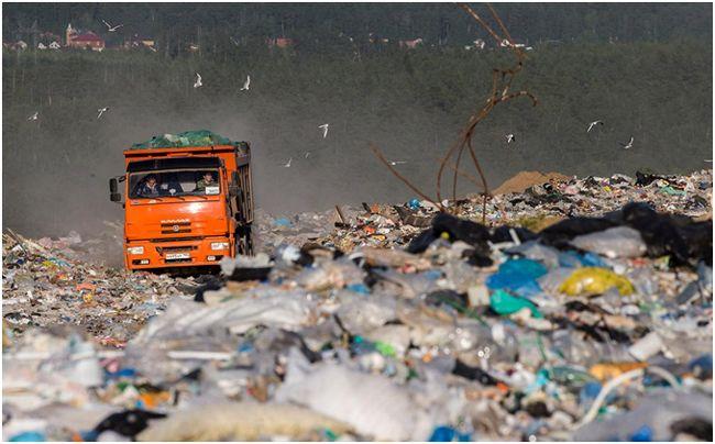 Какой мусор принимают на переработку