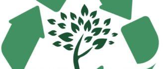 Экология новосибирск логотип